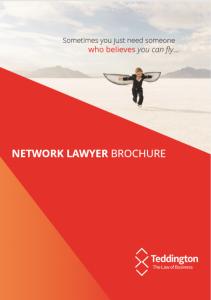 Network Lawyer Brochure