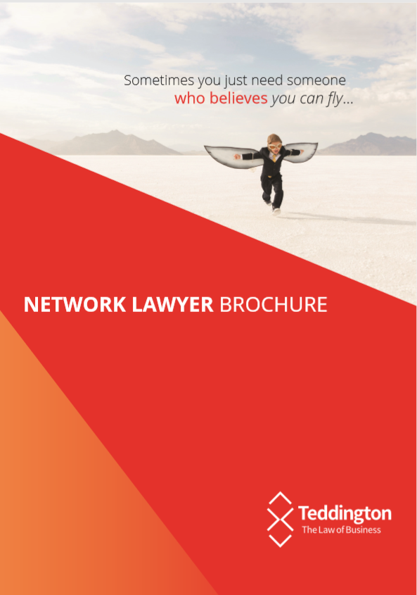 Network Lawyer Brochure